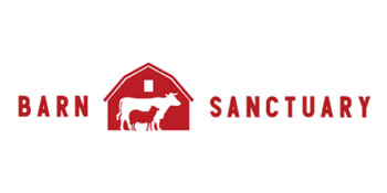 Reed Dynamic - Barn Sanctuary